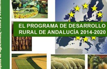 Nerja obtiene una subvención de más de 100.000 euros para la mejora de playas