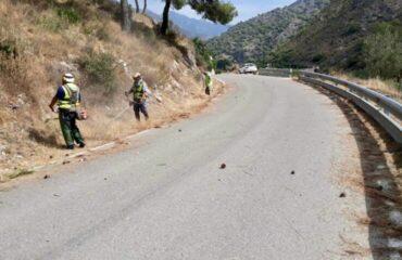 La Diputación acomete tareas de mantenimiento y limpieza de la carretera de Río de la Miel